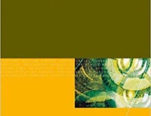 Handbuch Bildungsfinanzierung (2010)